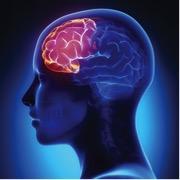 Boosting brain power through the arts photo 2